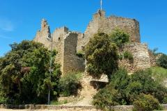 Front entrance castle Mas Carbó