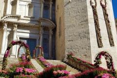 Basílica-de-Sant-Feliu-Temps-de-Flors